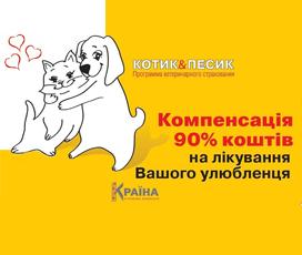 "Online страховка ""Котик&Песик"""
