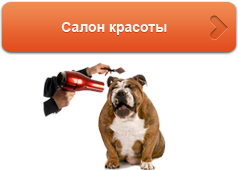 салон красоты для животных Киев